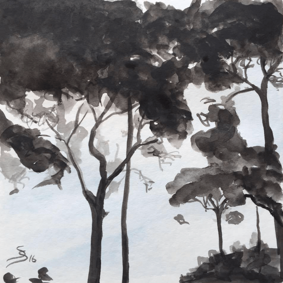"<p class=""p1""><span class=""s1""><strong>below pine trees</strong>, 20 x 20 cm, aquarelle</span></p>"