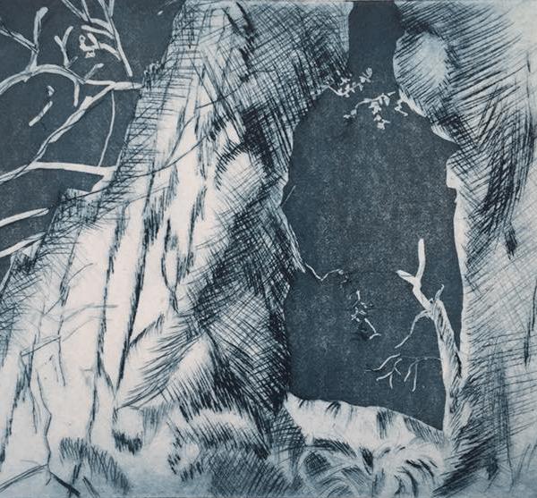 Peep Tree, 15 x 20 cm, line etching, aquatint