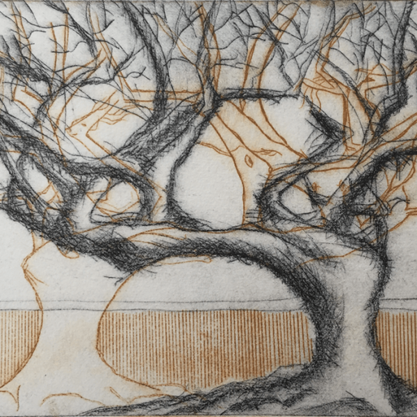 2 Trees 2, 15 x 21 cm, etching