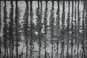 Titel: Baumspiegelung3, Größe: 19,5/29,5, Technik: Strichätzung und Aquatinta