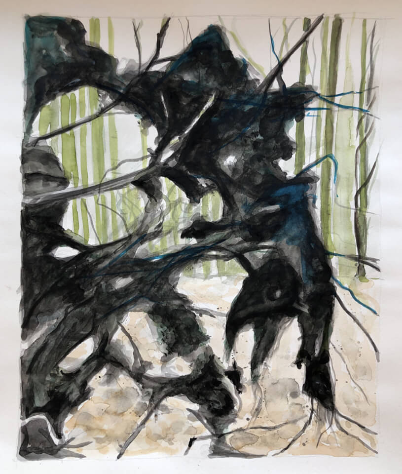 """<p class=""""p1""""><span class=""""s1""""><strong>Root</strong>, 48 x 36 cm, aquarelle</span></p>"""